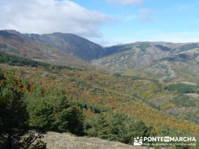 excursiones montaña madrid, Parque Natural del Hayedo de Tejera Negra; senderismo comunidad de madr